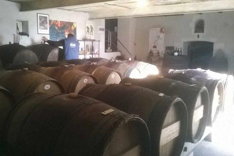 chai manoir de la bellonnière à Cravant-les-côteaux