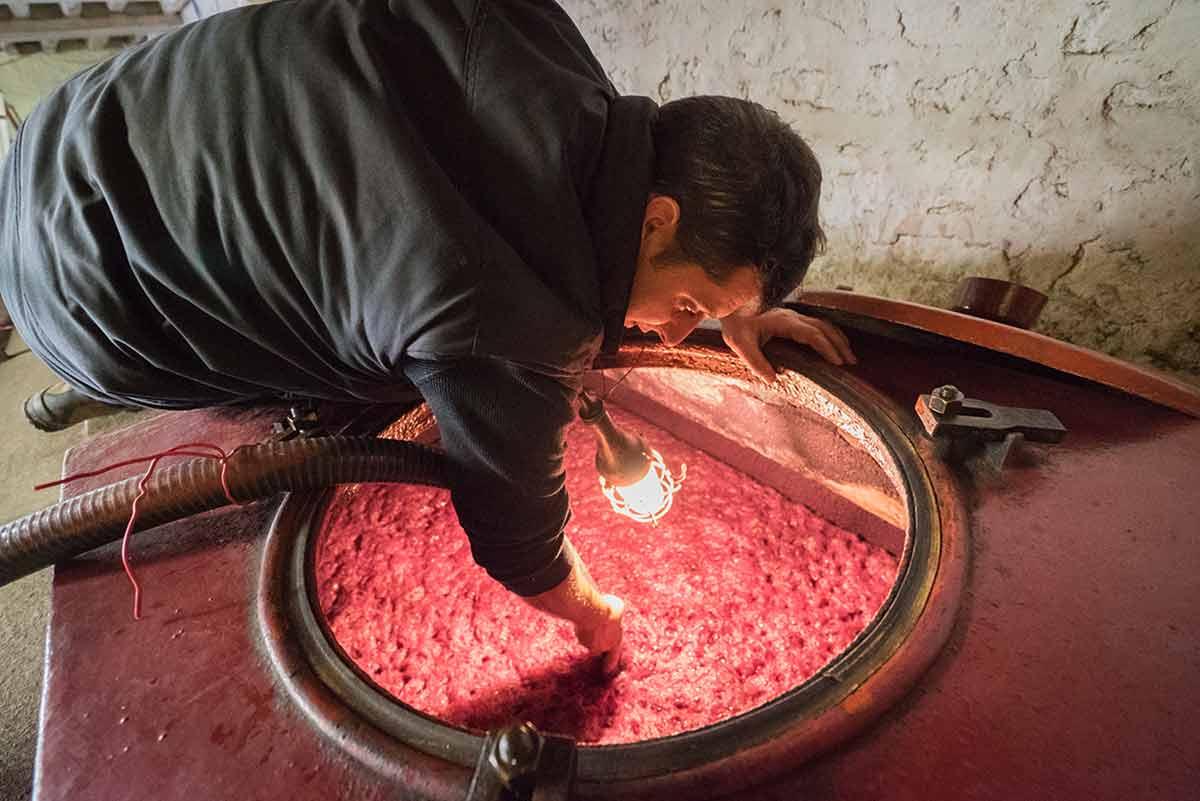étape de vinification - alexandre moreau verifie la fermentation